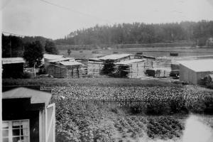 Fotot taget från Kimarps gård mot norr, längst bort syns järnvägen hitom den går Sommavägen och viadukten under järnvägen skymtar också. På mossen där Atteviks och OEM ligger står höhässjorna på rad...
