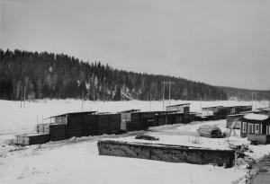 Brädgården vintern 1965